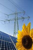 Solarmodule, Sonnenblume und Strommast mit Leitungen