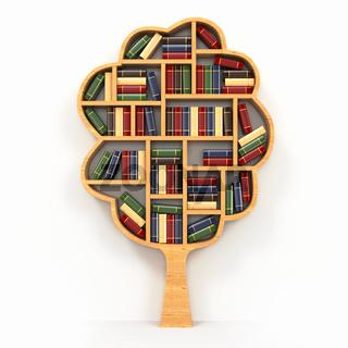 Tree of knowledge. Bookshelf on white background.