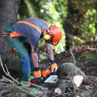 Ein Waldarbeiter beim Holz sägen -