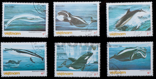 VIETNAM - CIRCA 19805 :  stamp - animal whale set