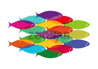 bunte Fische.jpg