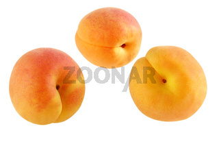 Drei fruchtige Aprikosen - freigestellt