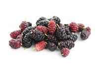 Fresh mulberries