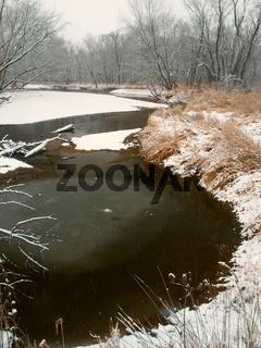 Winter in northern Illinois