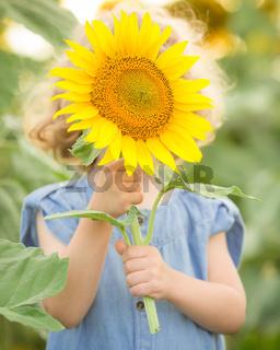 Child hiding by sunflower