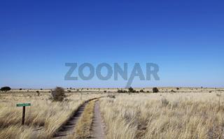 Phukwe Pan, Landschaft der Central Kalahari Game Reserve, CKGR,  Botswana, landscape in Central Kalahari Game Reserve, Botsuana