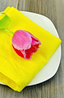Tulip pink on the plate