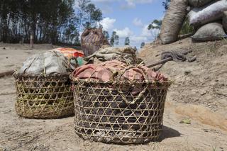 Körbe mit Bananen, Madagaskar, Afrika