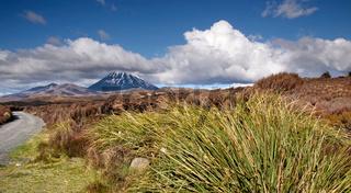 Mount Ngauruhoe im Tongariro Nationalpark