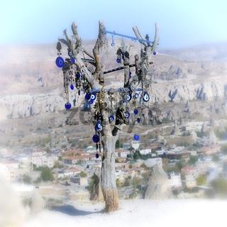 Der Baum mit dem Auge der Fatima Türkei