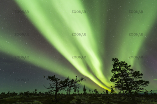 Nordlicht (Aurora borealis), Lappland, Schweden