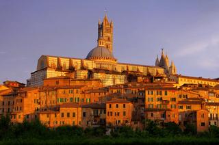Siena 03