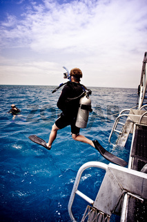 Diver leaping into the sea off a boat