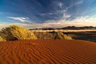 Dünen im Namib-Rand-Naturpark