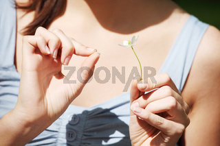 Woman counting petals of flower.