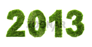 New year 2013 - ecology concept