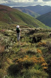 Spain: Wandern mit Blick auf die Montes de Leon