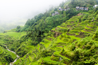 banaue rice terraces in Philippines, Asia.