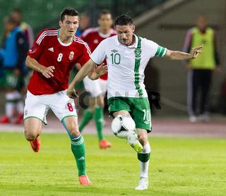 Hungary vs. Ireland international friendly football game