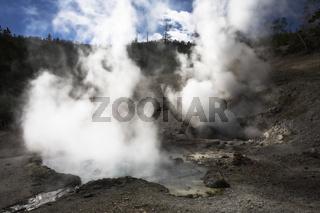 Boiling  geyser
