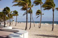 Sandstrand mit Palmen in Fort Lauderdale
