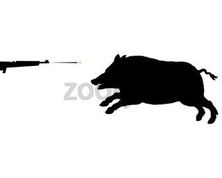 Wildschwein Jagd