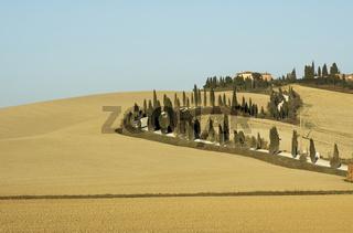 tuscan lanscape