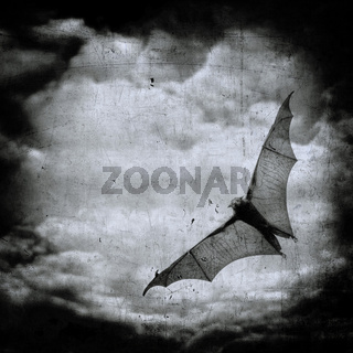 bat in the dark cloudy sky, perfect halloween background