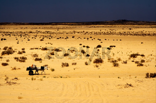 people in the desert of tunisia