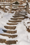 Treppen im Schnee | Stairs in the snow