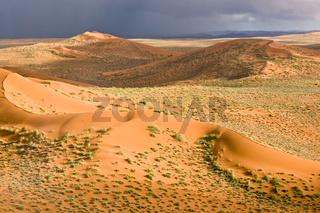 Über der grünen Wüste
