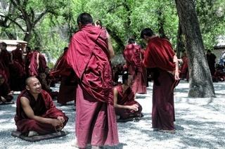 junge Mönche beim debattieren im Hof Kloster Sera