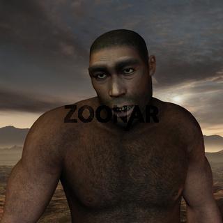 Early human Homo erectus