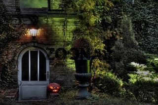 Halloween Szene mit Kürbis,beleuchtete Tür eines Hauses