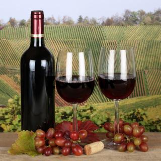 Rotwein in einem Weinglas mit Weintrauben