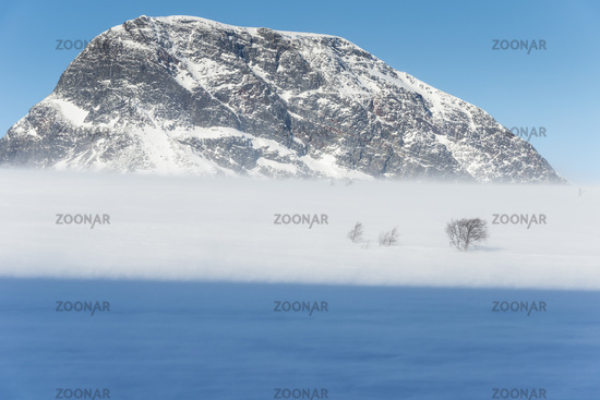 Winterlandschaft im Schneetreiben, Vistasdalen, Kebnekaisefjaell, Lappland