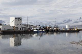 Fischereihafen von Djúpivogur, Island