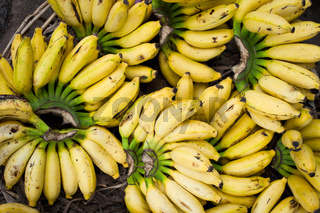 Fresh bananas at market place