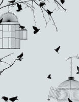 Birds and birdcages postcard 2