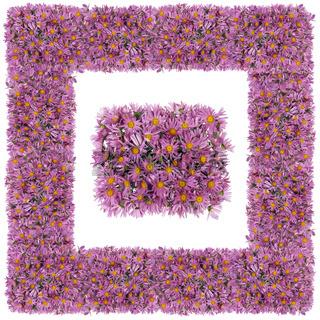 Square pink floral frame