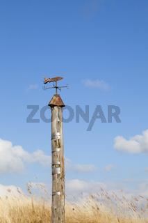 Wind-und Wasserstandsmesser