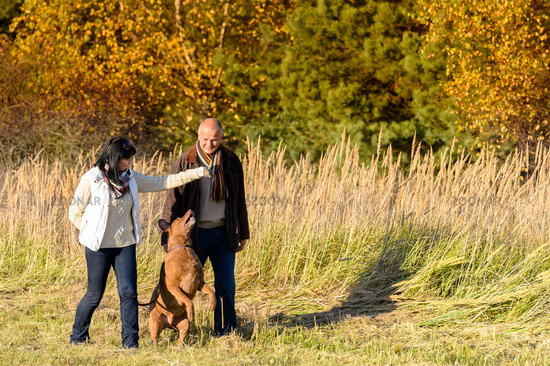 Couple playing with dog autumn sunny countryside
