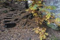 Weg am Kleinen Bärenstein, Elbsandsteingebirge