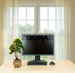 Small bonsai tree on plain office desk with monitor