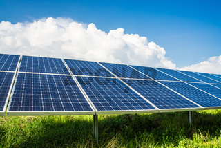 Solarpanels auf Feld