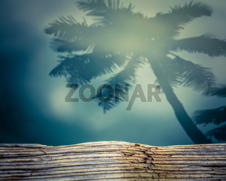 Retro Shadow Of A Palm Tree On Water