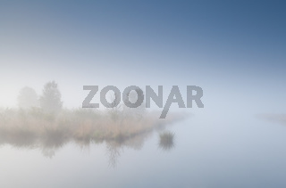 tree island on lake in dense fog