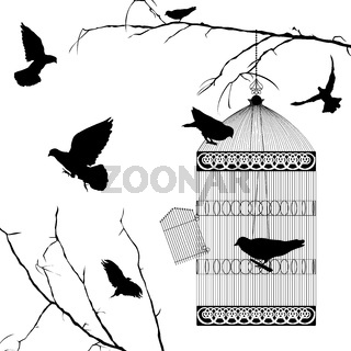 Flying birds and cage silhouettes over white background