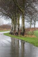 Herbststrasse im Regen