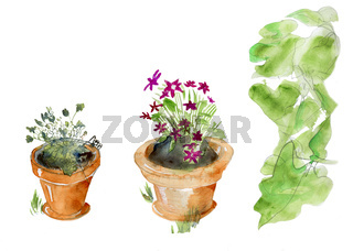 Isolated garden pots
